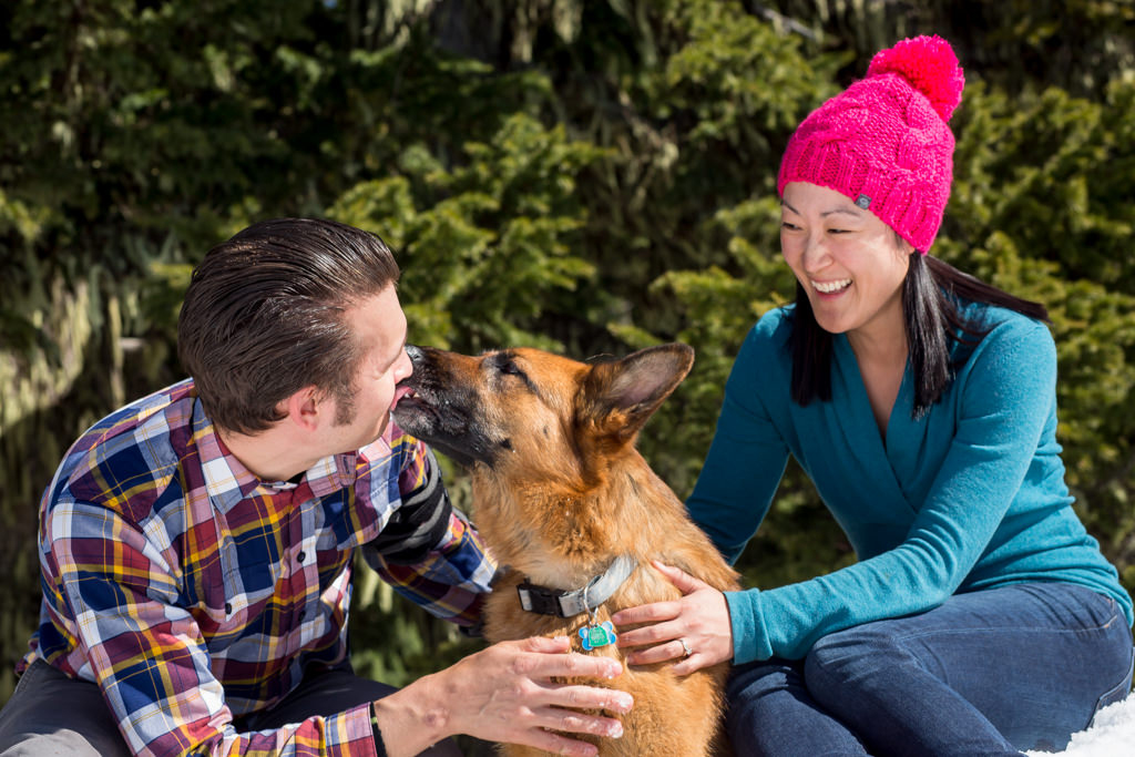 Timberline Lodge Dog Photos With Avery